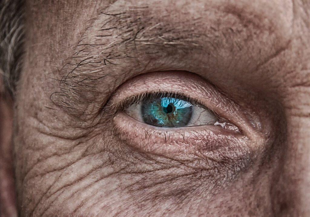 rozchodnice-starnuti